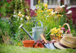 low cost gardening