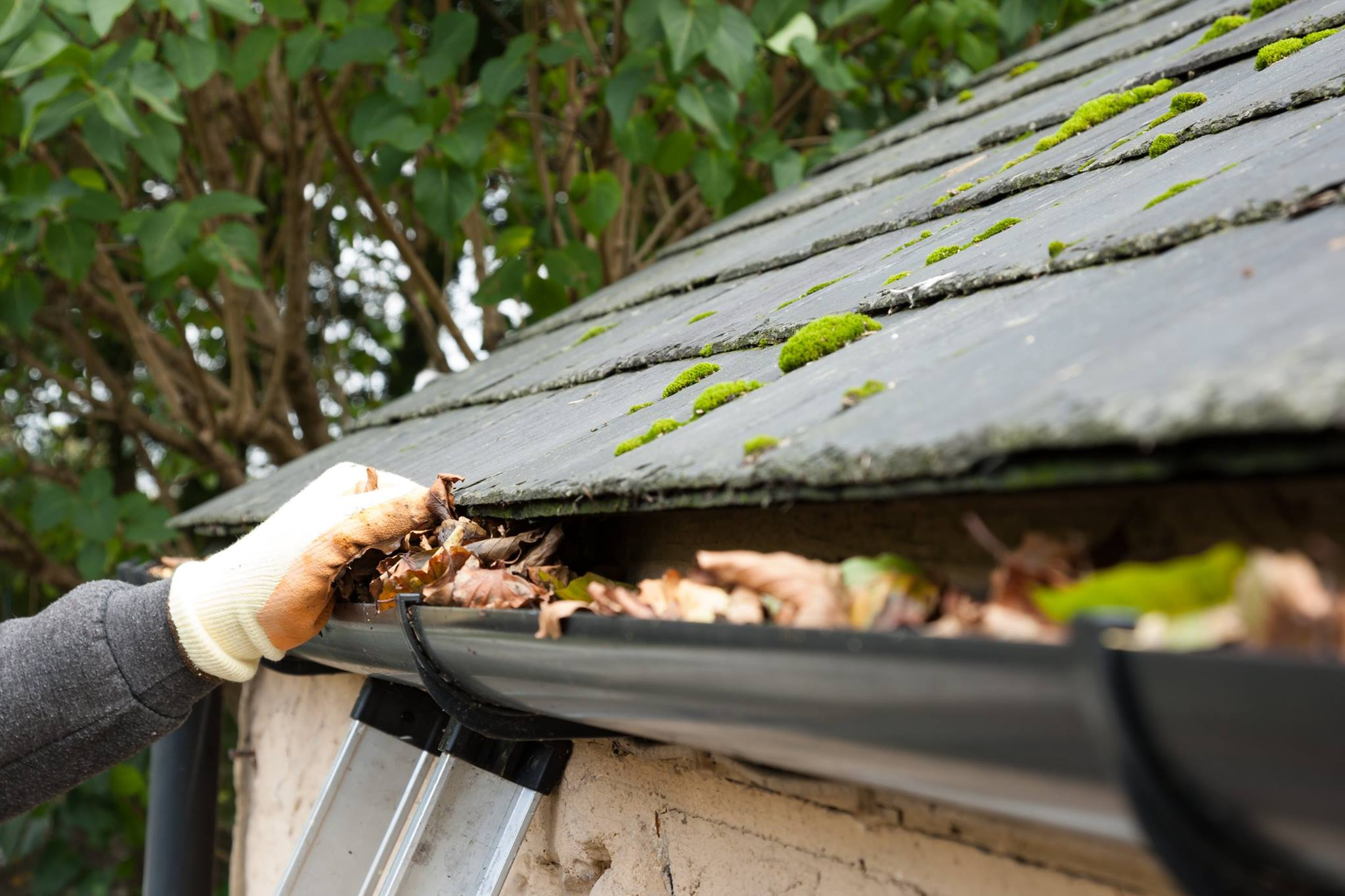 How To Hire The Best Gutter Cleaning Company Useful