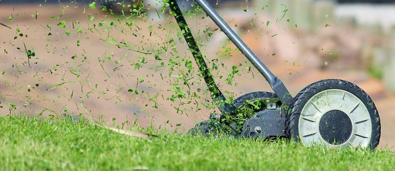 maintaining your garden