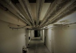 Keep Your Home Safe: The Creepy Things Found in Crawl Spaces